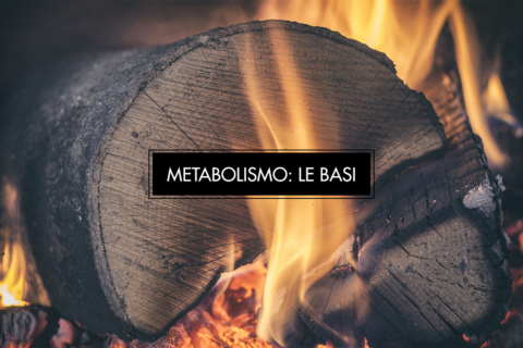 Aumentare il metabolismo: quando è necessario?